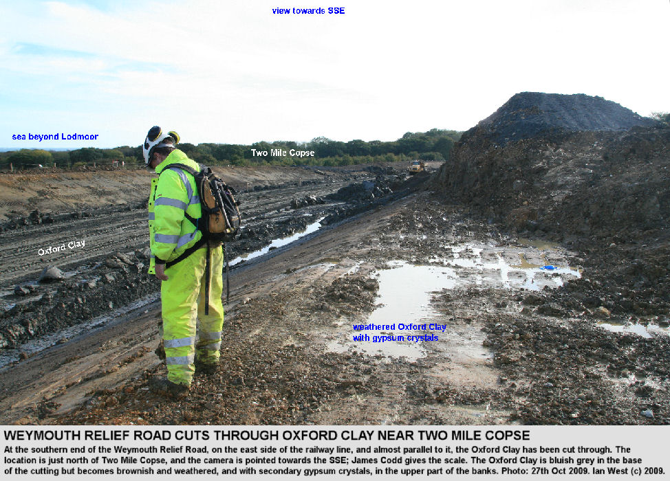 The Oxford Clay is cut through just north of Two Mile Copse, southern part of the Weymouth Relief Road, Dorset, 27th October 2009