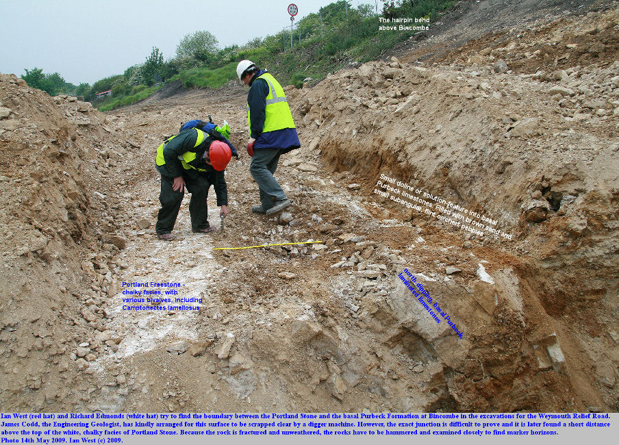 Ian West and Richard Edmonds try to find the Portland-Purbeck junction in a trench excavation arranged by James Codd, in the works for the Weymouth Relief Road, at Bincombe, Dorset, 14th May 2009