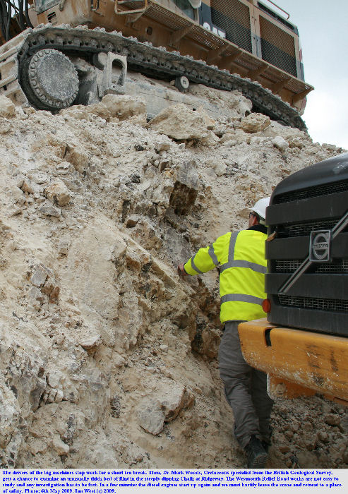 Dr. Mark Woods examines an unusually thick bed of flint in the Chalk at Ridgeway, Weymouth Relief Road works, Dorset, 6th May 2009