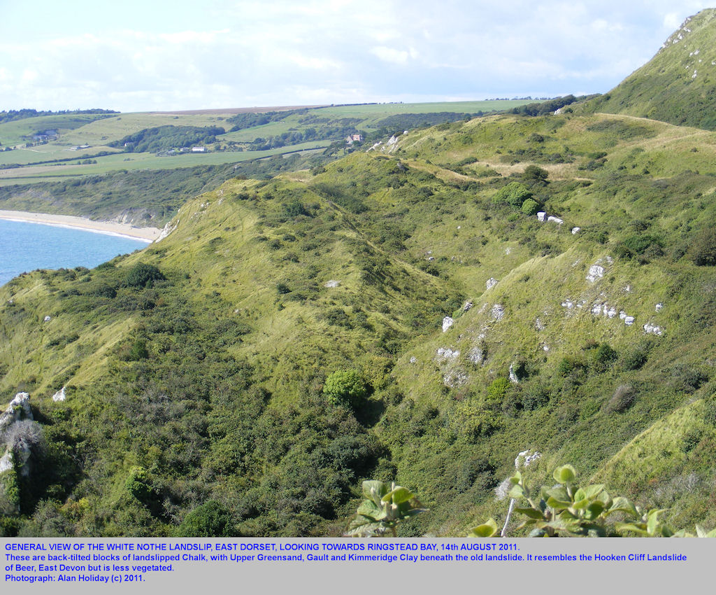The landslide of Chalk in back-rotated blocks, White Nothe, near Weymouth, Dorset, looking from the Smugglers' Path northwest towards Ringstead Bay, 2011