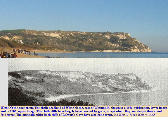 Changes in exposure of Chalk and vegetation at White Nothe, from 1933 to 2006