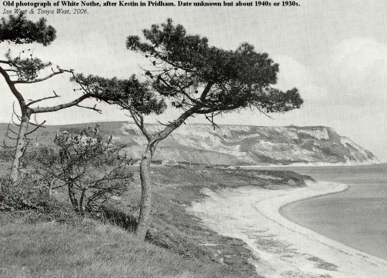 Old photograph of White Nothe, east of Weymouth, Dorset, Kestin, 1930s or 40s
