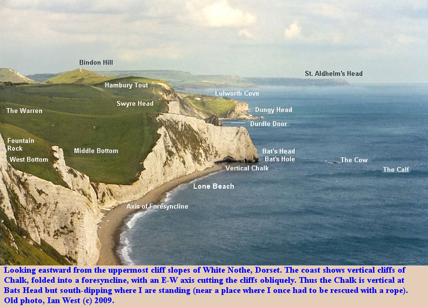 View of the Chalk cliffs of the Dorset coast from White Nothe to Bat's Head and Swyre Head, as seen from the rather hazardous upper slopes of White Nothe cliffs, old photograph of Ian West