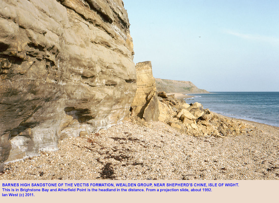 The Barnes High Sandstone of the Vectis Formation, Wealden Group, near Shepherds Chine, Isle of Wight, about 1992