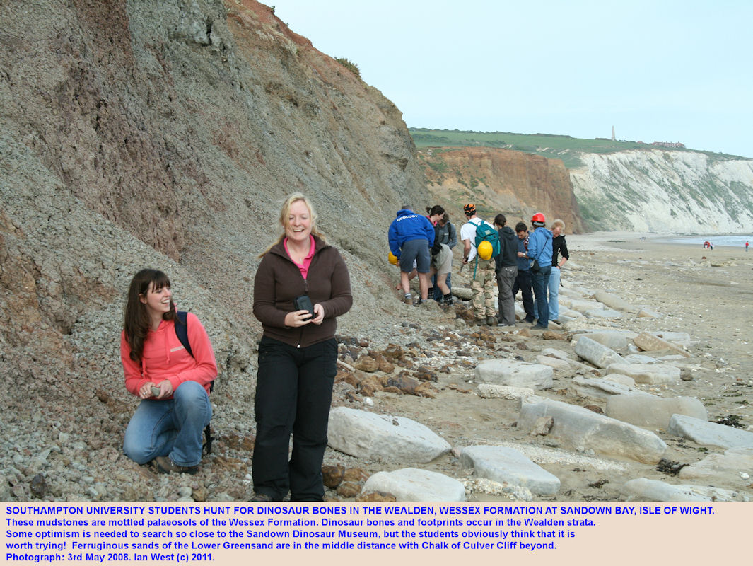 A dinosaur hunt in the Wealden Wessex Formation at Sandown, Isle of Wight, 2008