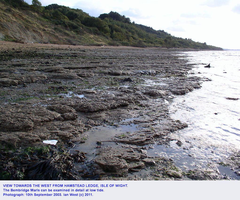 Bembridge Marls exposed on the foreshore at low tide, and seen from Hamstead Ledge, Hamstead, Isle of Wight, 10th September 2003