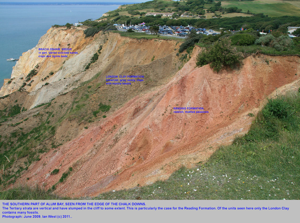 The Reading Formation and London Clay in Alum Bay, Isle of Wight, seen from above, on the Chalk outcrop, 2009
