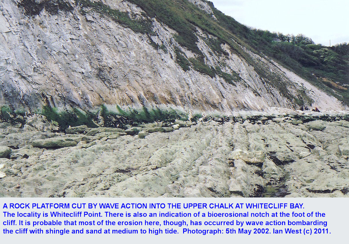 A rock platform cut by wave action into cyclical Upper Chalk at Whitecliff Point, Whitecliff Bay, Isle of Wight, 2002
