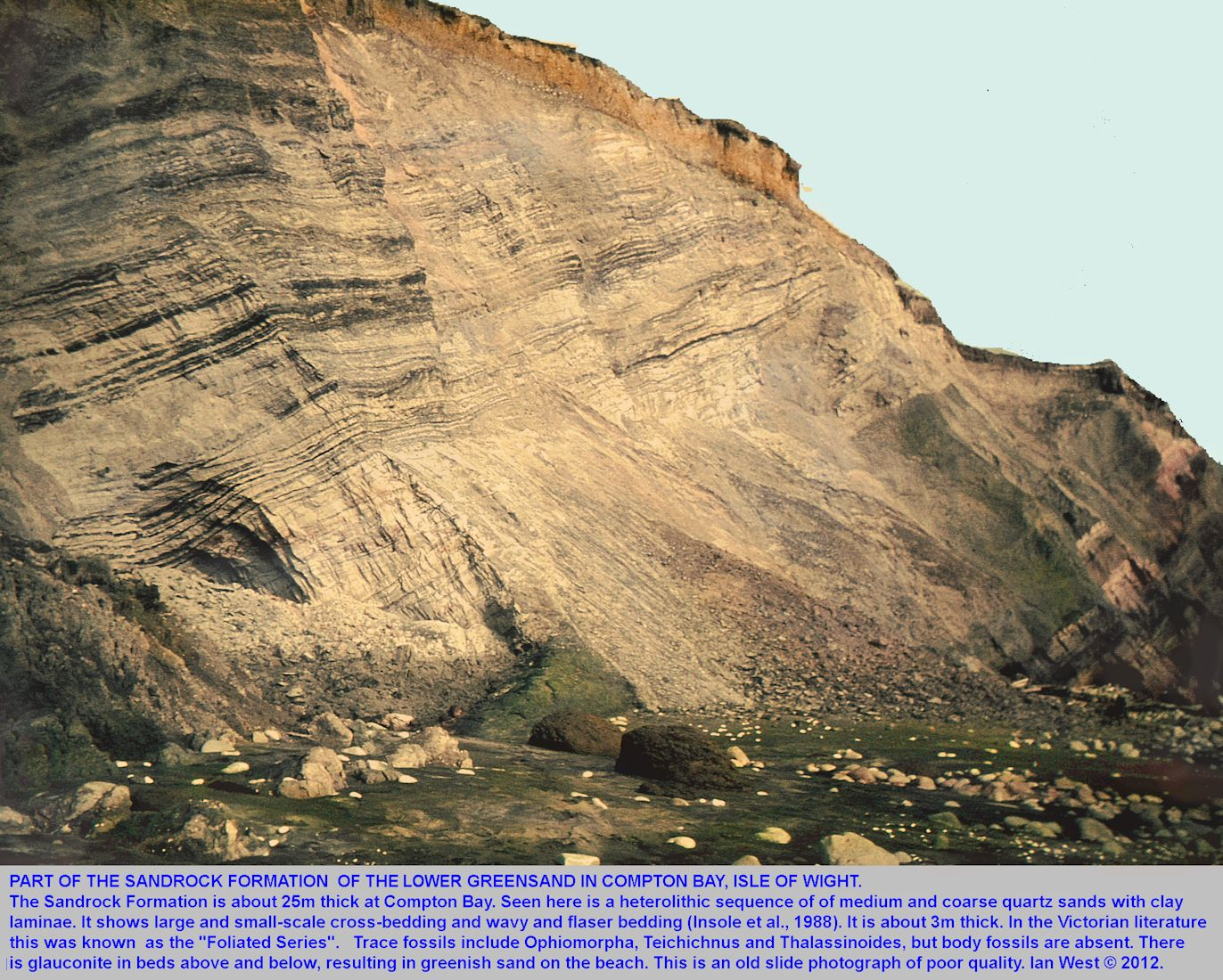 Part of the Sandrock Formation, Lower Greensand, with the so-called Foliated Series, Compton Bay, Isle of Wight, from an old slide