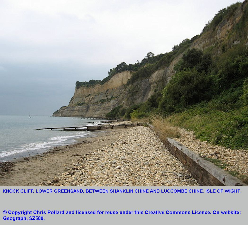 Horse Ledge, Shanklin and Knock Cliff between Shanklin Chine and Luccombe Chine, Isle of Wight