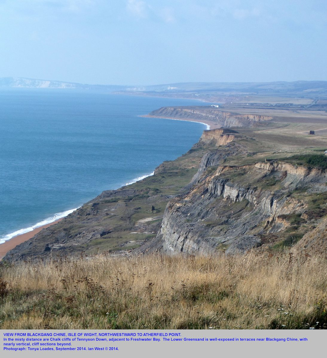 View towards Atherfield Point from Blackgang Chine, Isle of Wight, showing Lower Greensand cliffs, September 2014