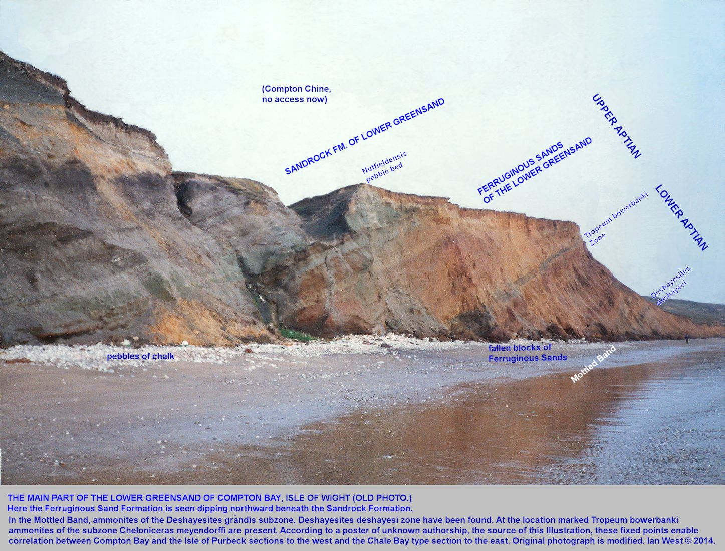 Lower Greensand at Compton Bay with some zonal positions in the Ferruginous Sands shown, Isle of Wight