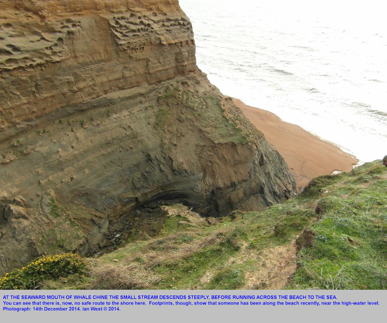 The outer and lower part of Whale Chine, Isle of Wight, with the stream descending steeply before reaching the shore and crossing the beach, 14th December 2014