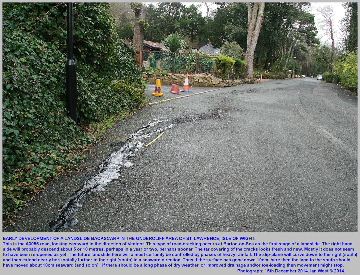 An incipient curved backscarp of a new landslide in the A3055 road at St. Lawrence, Isle of Wight, 14th December 2014