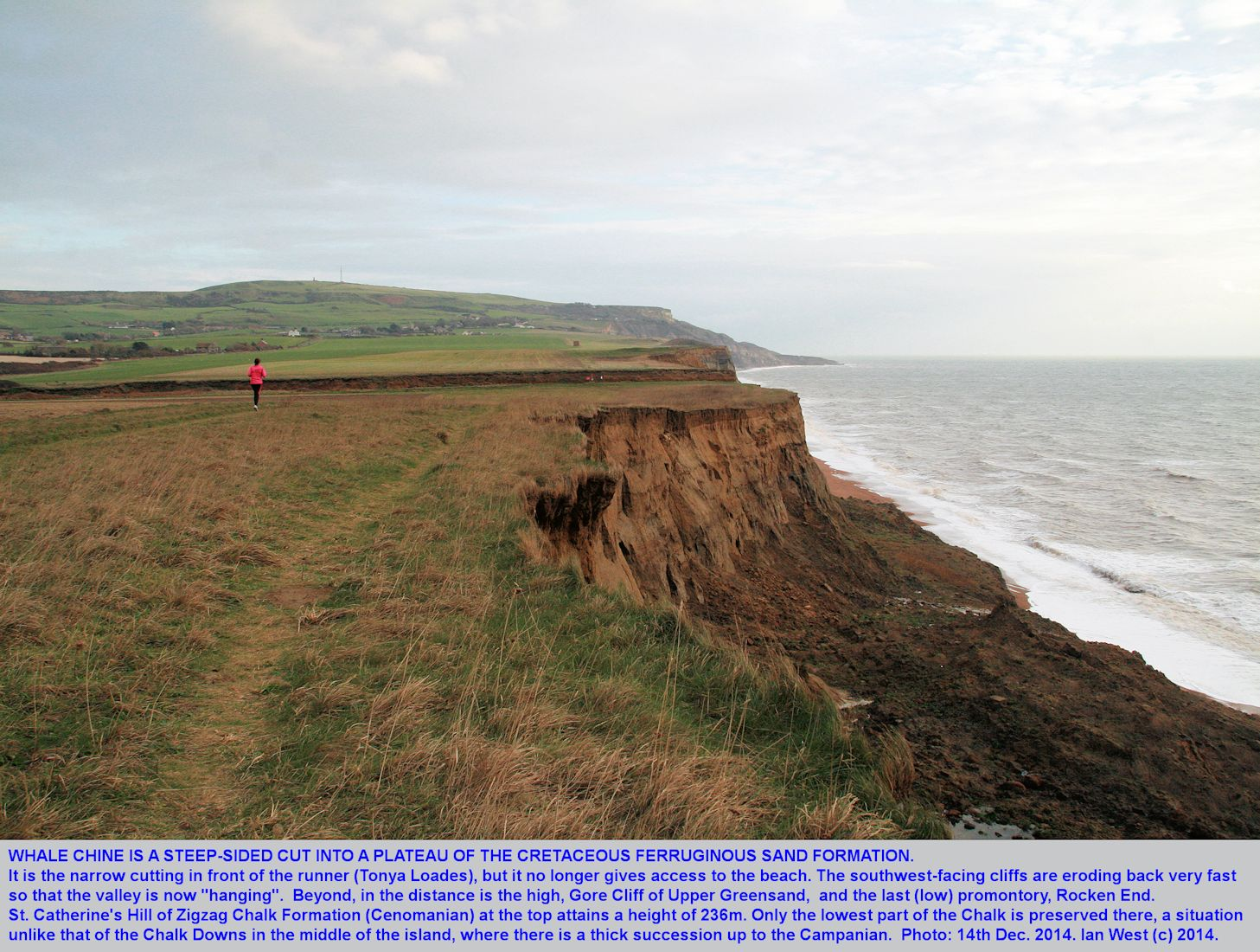 Whale Chine, a steep, incised valley, cut into a plateau of Ferruginous Sand Formation, being cut back by the sea, general view, southwest Isle of Wight, 14th December 2014