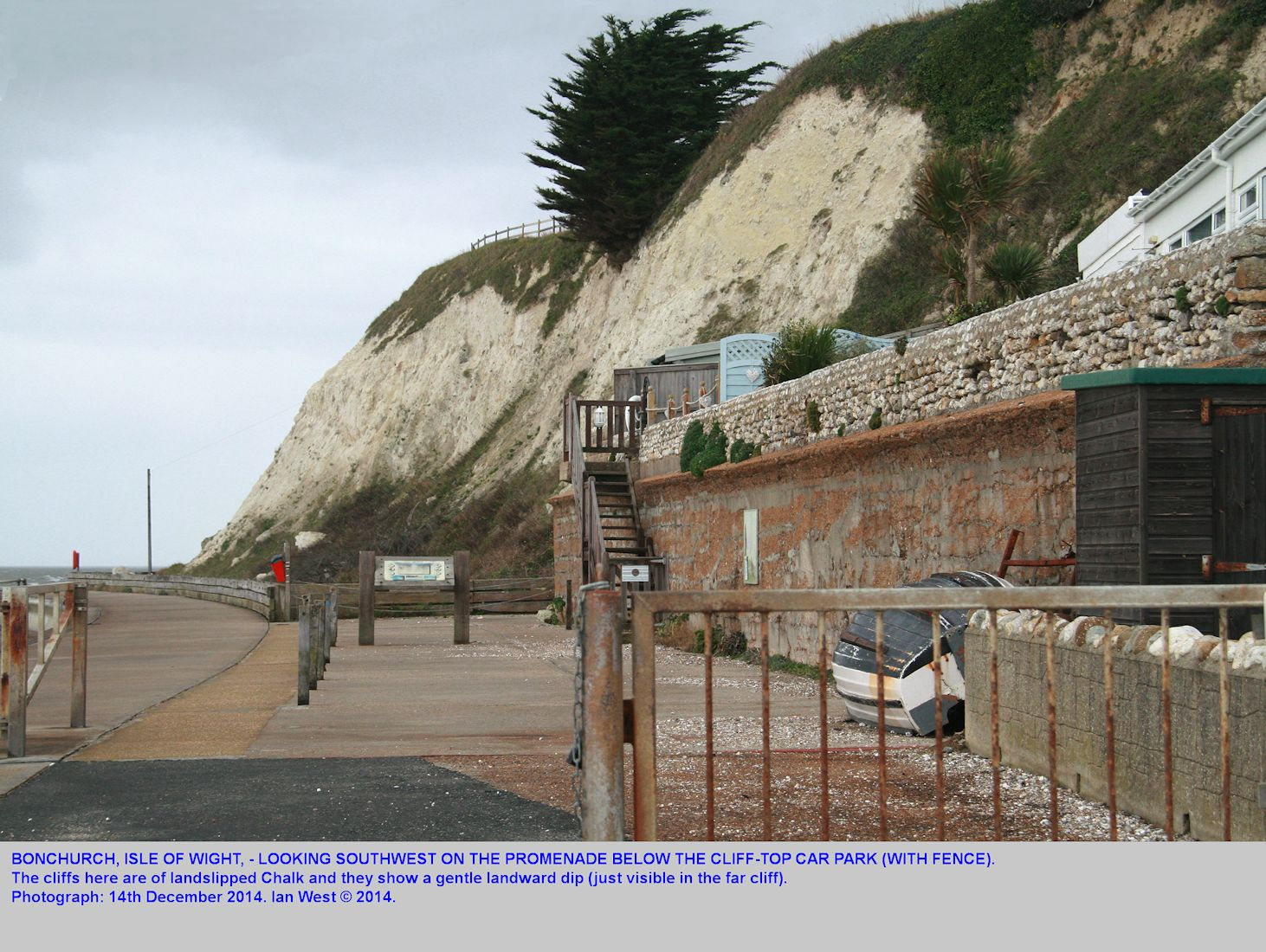 Cliffs of landslide-displaced, landward-dipping Chalk debris, below the car park at Bonchurch, Isle of Wight, 14th December 2014, Ian West