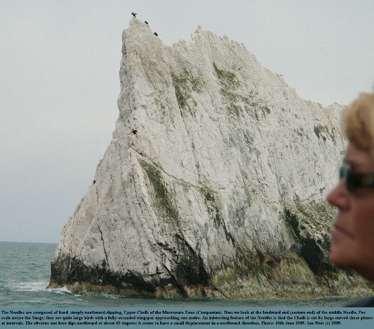 The Second Stack or Middle Needle, eastern end, with a conspicuous, north-dipping shear plane in the Mucronata Chalk, Isle of Wight, 10th June 2009