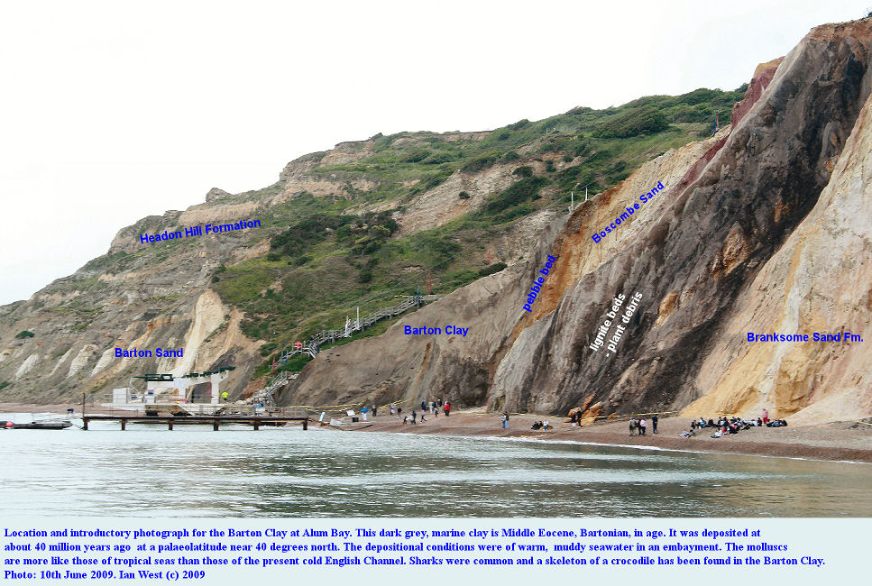 A general view from the sea of the Middle Eocene, Barton Clay at Alum Bay, Isle of Wight, 10th June 2009