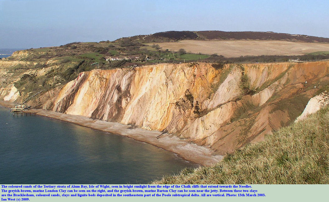 The coloured sands and clays and lignite beds of the Eocene, Bracklesham strata of Alum Bay, Isle of Wight, as seen from the Chalk cliffs