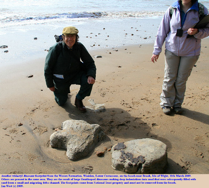Another, tridactl, dinosaur footprint of an herbivorous dinosaur of Iguanodon type, Wealden, Wessex Formation, Cretaceous, Isle of Wight, 11th March 2009