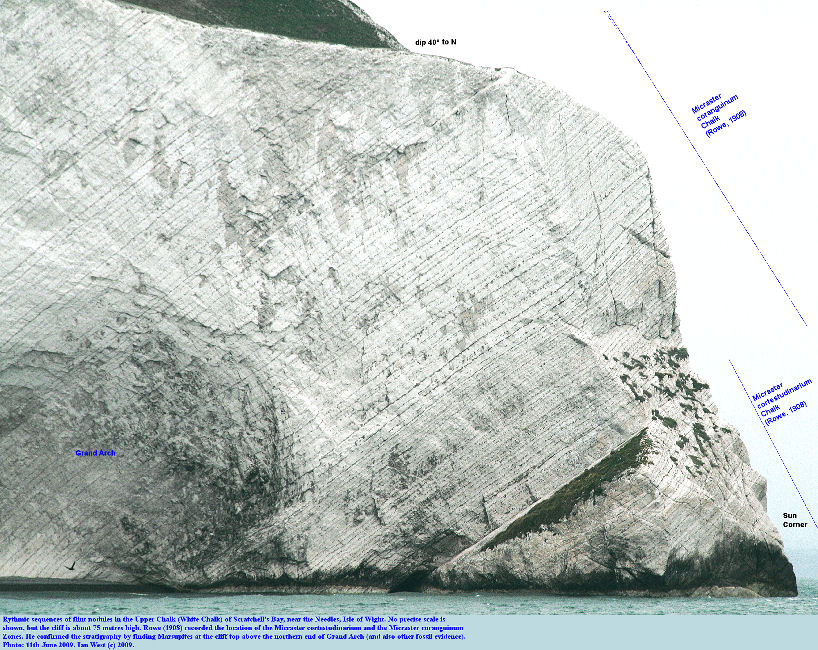 Upper Chalk with rhythmic flint bands, southern part of Scratchell's Bay and Grand Arch, Isle of Wight, 10th June 2009
