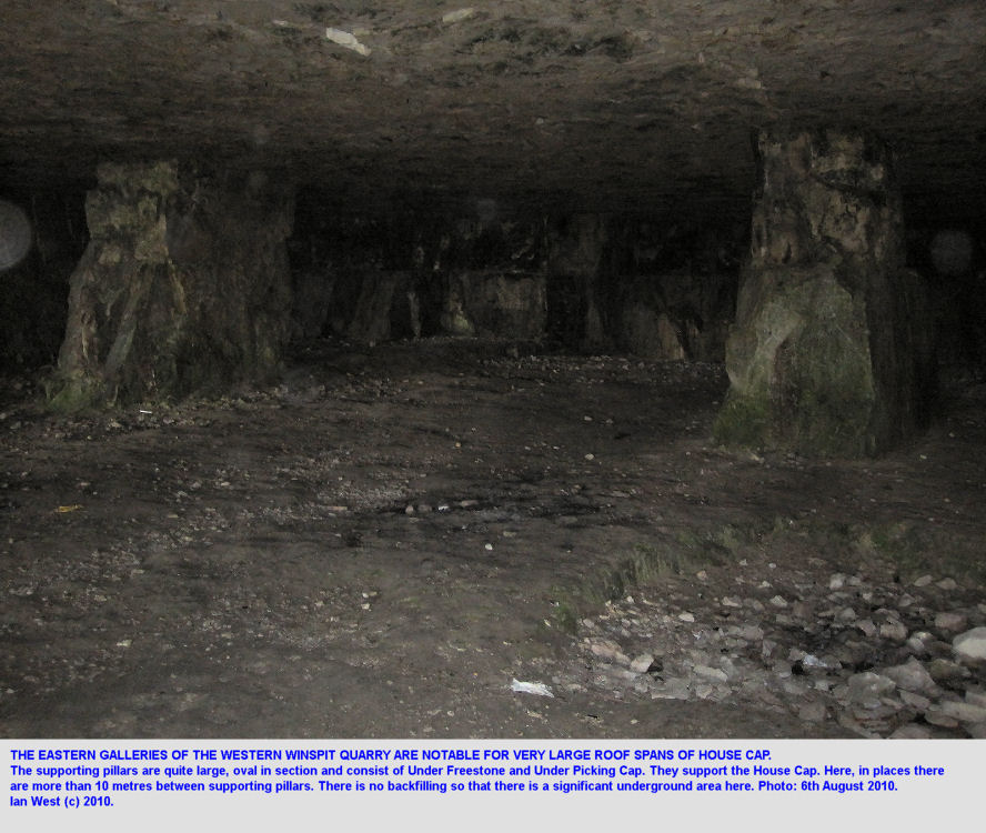 Wide areas of unsupported roof are present in certain parts of the galleries of Western Winspit Quarry, Dorset