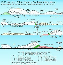 Cliffs from White Nothe to Worbarrow Bay, Dorset. Old diagram