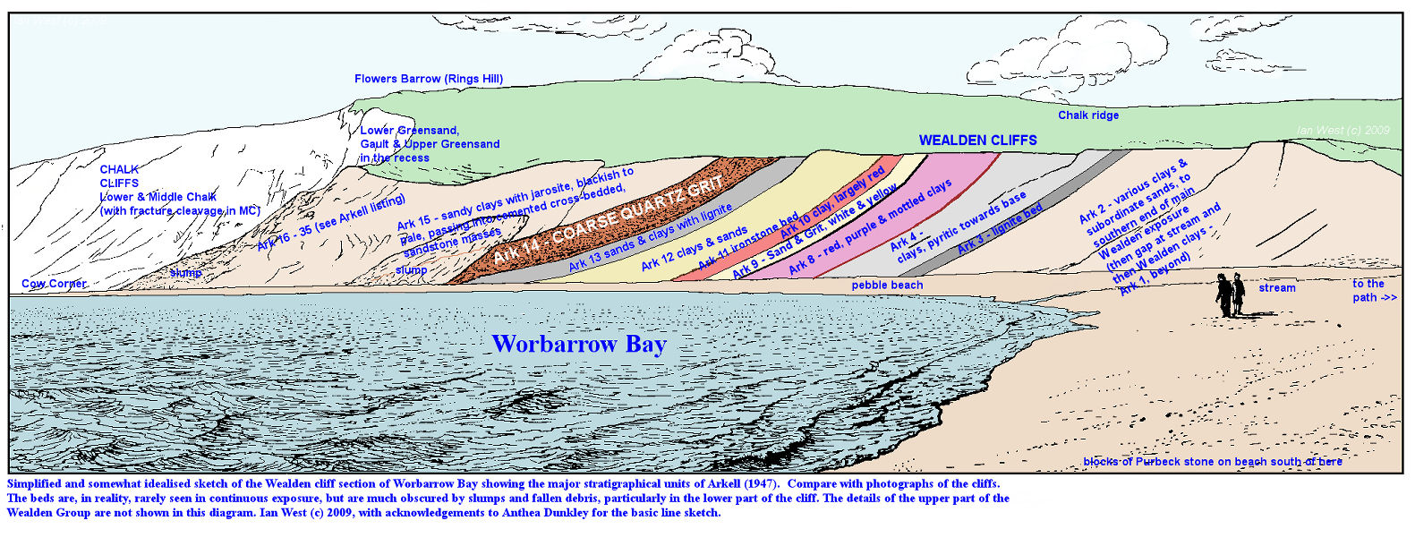 A diagrammatic sketch of the cliff section of Wealden strata at Worbarrow Bay, Dorset, showing some of the stratigraphical units of Arkell (1947)