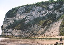 Chalk cliffs, Culver Cliff, south end of Whitecliff Bay