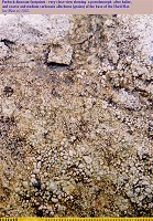 Close view dinosaur footprints - allochems and pseudomorphs