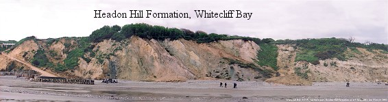 Cliffs with the Headon Hill Formation and Bembridge Limestone, Whitecliff Bay, Isle of Wight