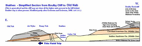 Simplified cliff-section, Boulby Cliff to Staithes to Old Nab