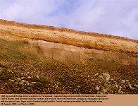 Pleistocene gravel on Barton Sand