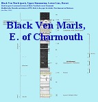 Black Ven Marls sequence, east of Charmouth