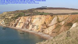 Tertiary strata in the cliffs of Alum Bay, labelled