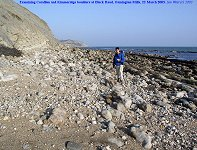 Examining Corallian and Kimmeridge debris at Black Head