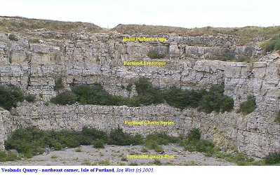 Yeolands Quarry - northeast corner, Isle of Portland