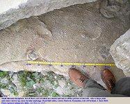 Two of a set of three small dinosaur footprints, Hard Slatt, Isle of Portland