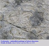 Whorls in the anomalous structure in Purbeck limestone