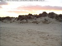 Limited erosion at the base of the Foredunes, Studland Bay, north of Knoll Beach, Feb 2003