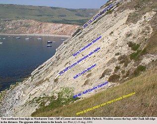 Cliff of Soft Cockle, Marly Freshwater and Cherty Freshwater Members, Purbeck Formation, Worbarrow Tout