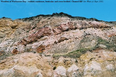 Reddish sandstone of probable channel origin in the Wealden of Worbarrow Bay, Dorset