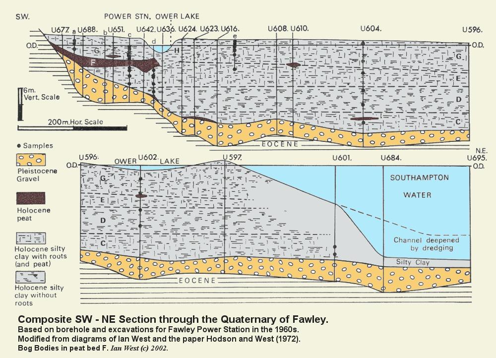 Ocean Floor Cross Section