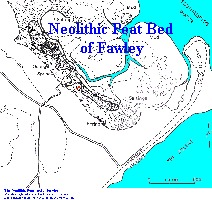 Map of peat bed at Fawley