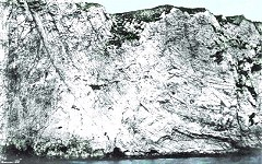 Ballard Down Fault, Chalk, Swanage - old photograph