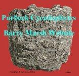 Purbeck cycadophytes