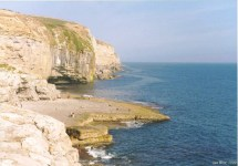 Dancing Ledge - view east