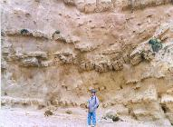 Extensional faulting, West Bay