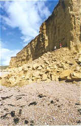 Fall of Bridport Sands