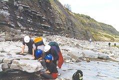 Fieldwork at Lyme Regis